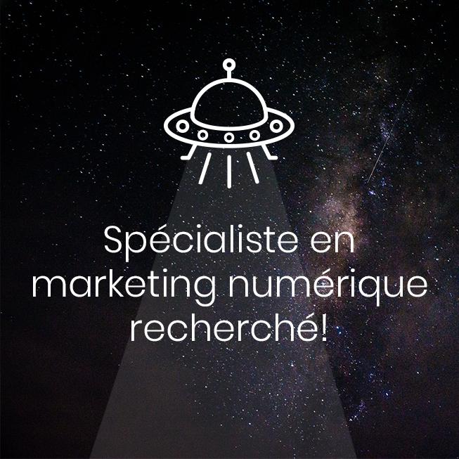 Image à la une -Spécialiste en marketing numérique